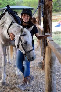 CFA Horse